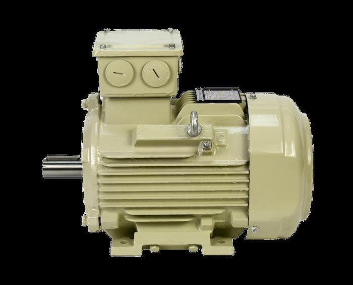 Cast iron motors atex - Motori elettrici