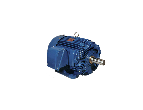 Electric motors nema premium - Motori elettrici industriali